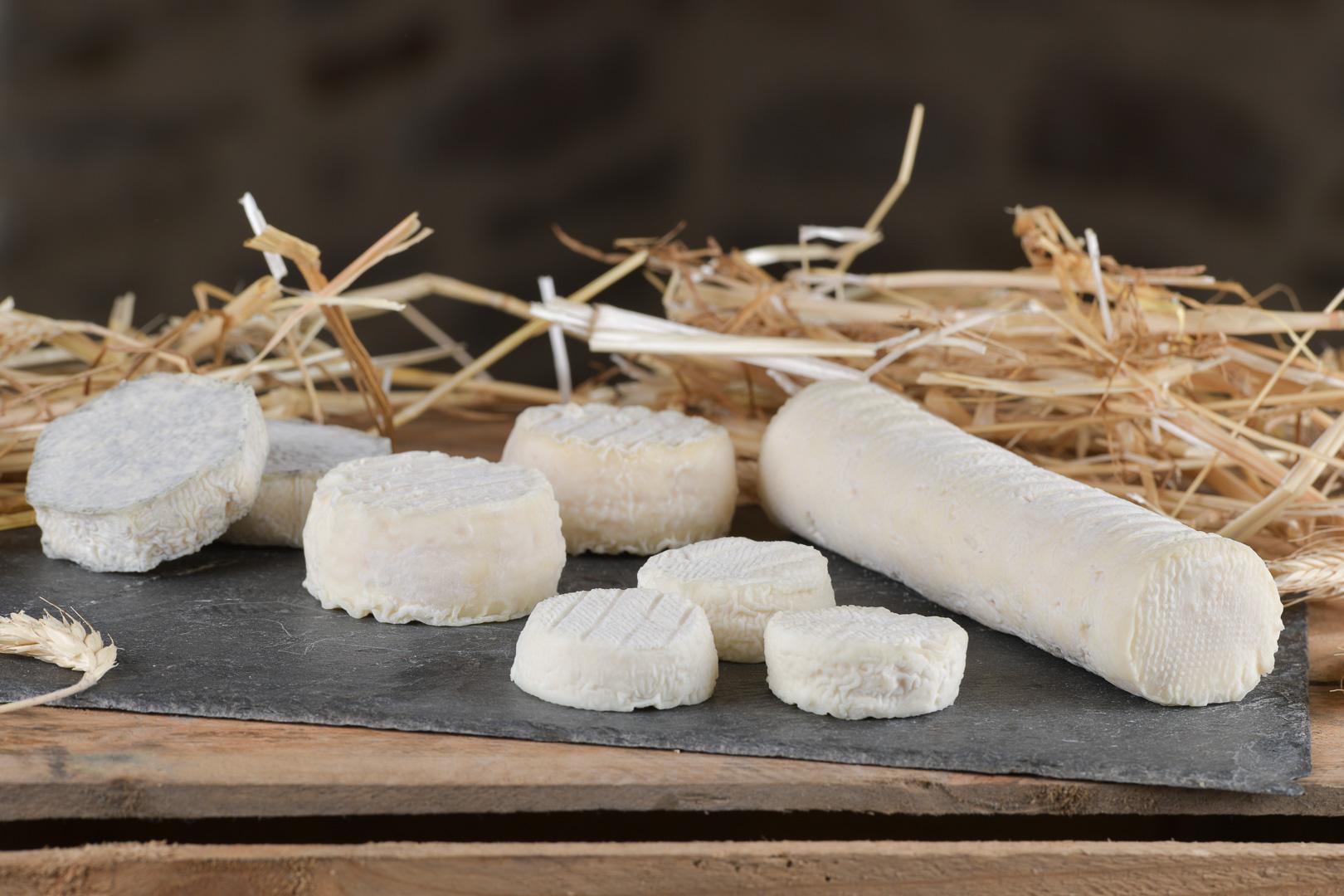 fromages-levezou-producteurs-aveyron©richard-storchi (161)