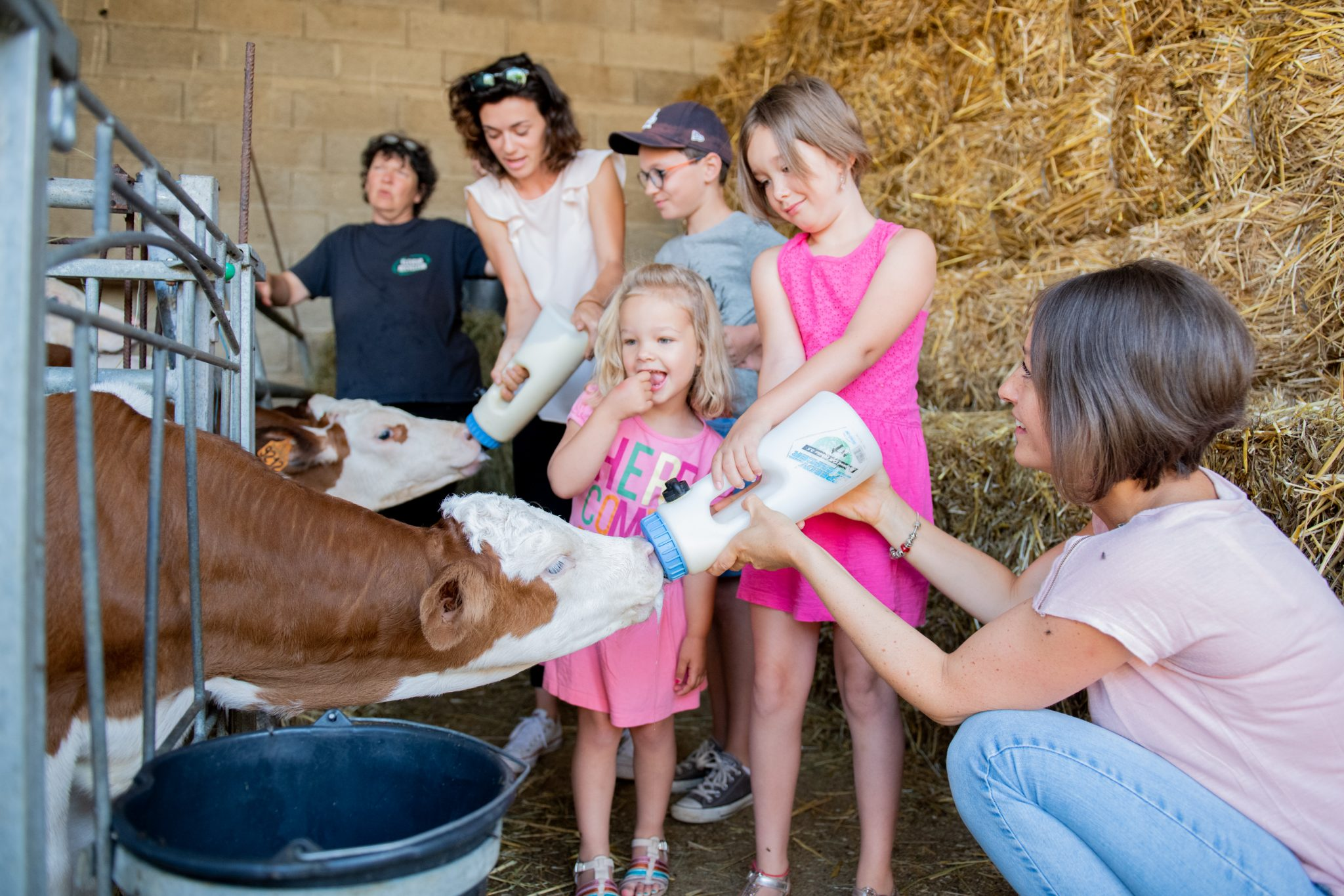Découverte de la vie à la ferme en famille