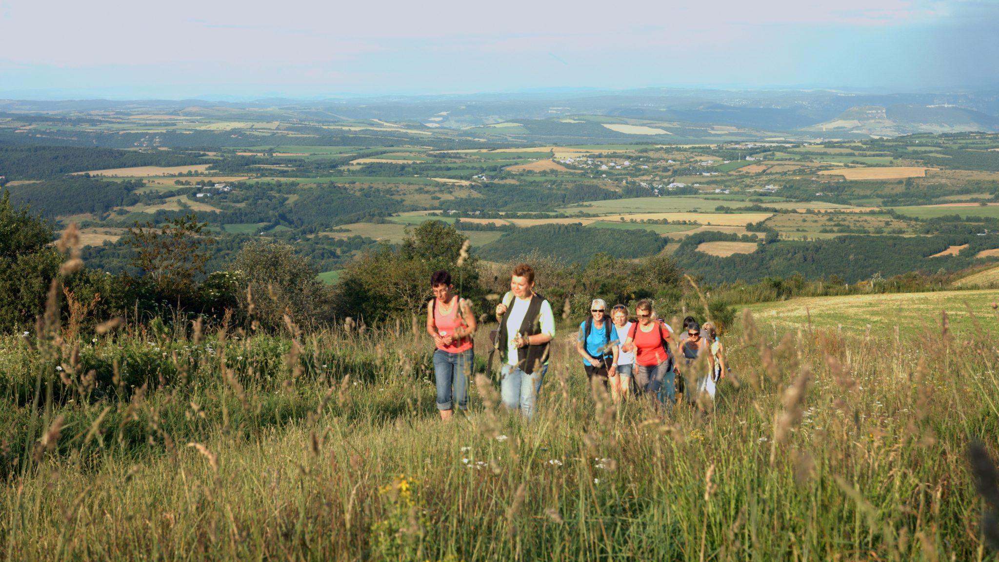 Randonnée au Monseigne sur le Lévézou en Aveyron