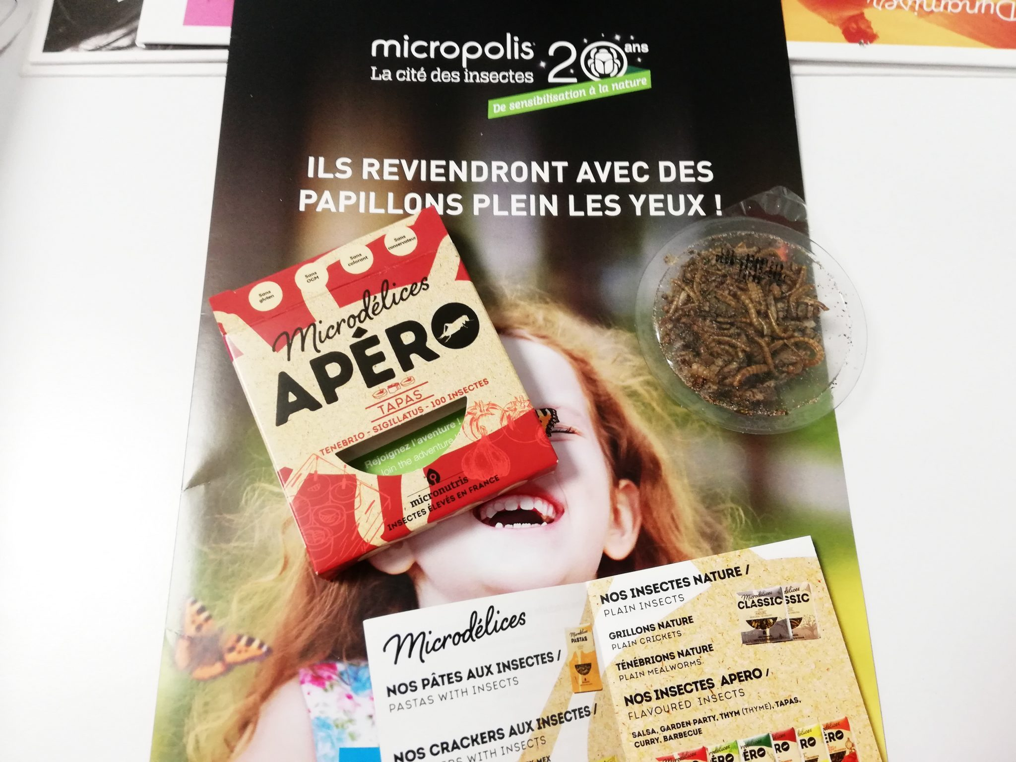 micropolis-cite-insectes-levezou-aveyron©micropolis